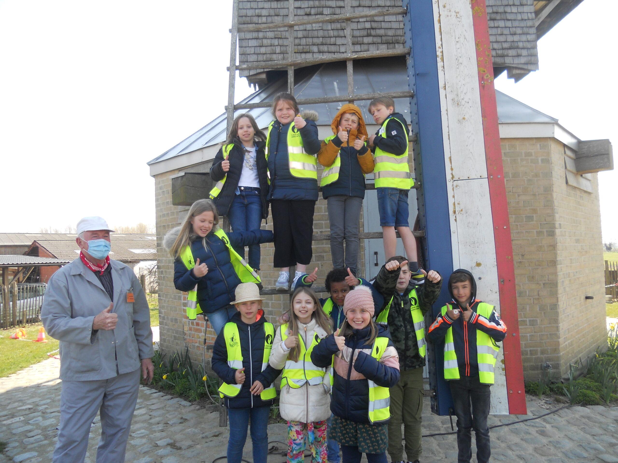Leerlingen hebben armspieren nodig in de Beeuwsaertmolen in Bikschote